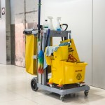 Multifunction Cleaning Cart (s)